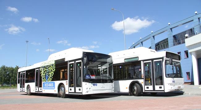 автобусы маз фото
