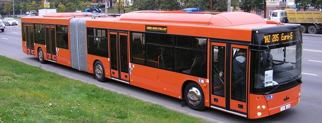 маз автобус фото